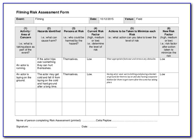 Venue Security Risk Assessment Template