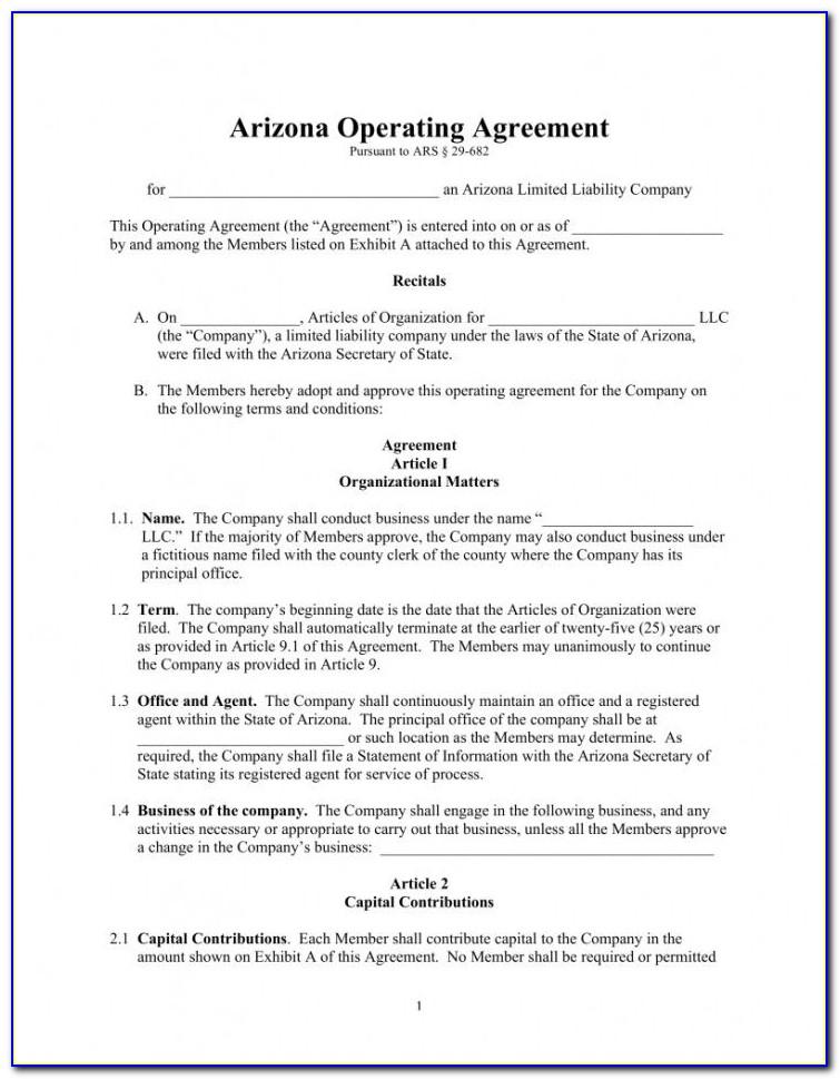 Articles Of Organization Georgia Template