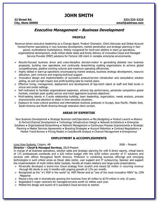 Executive Director Resume Example