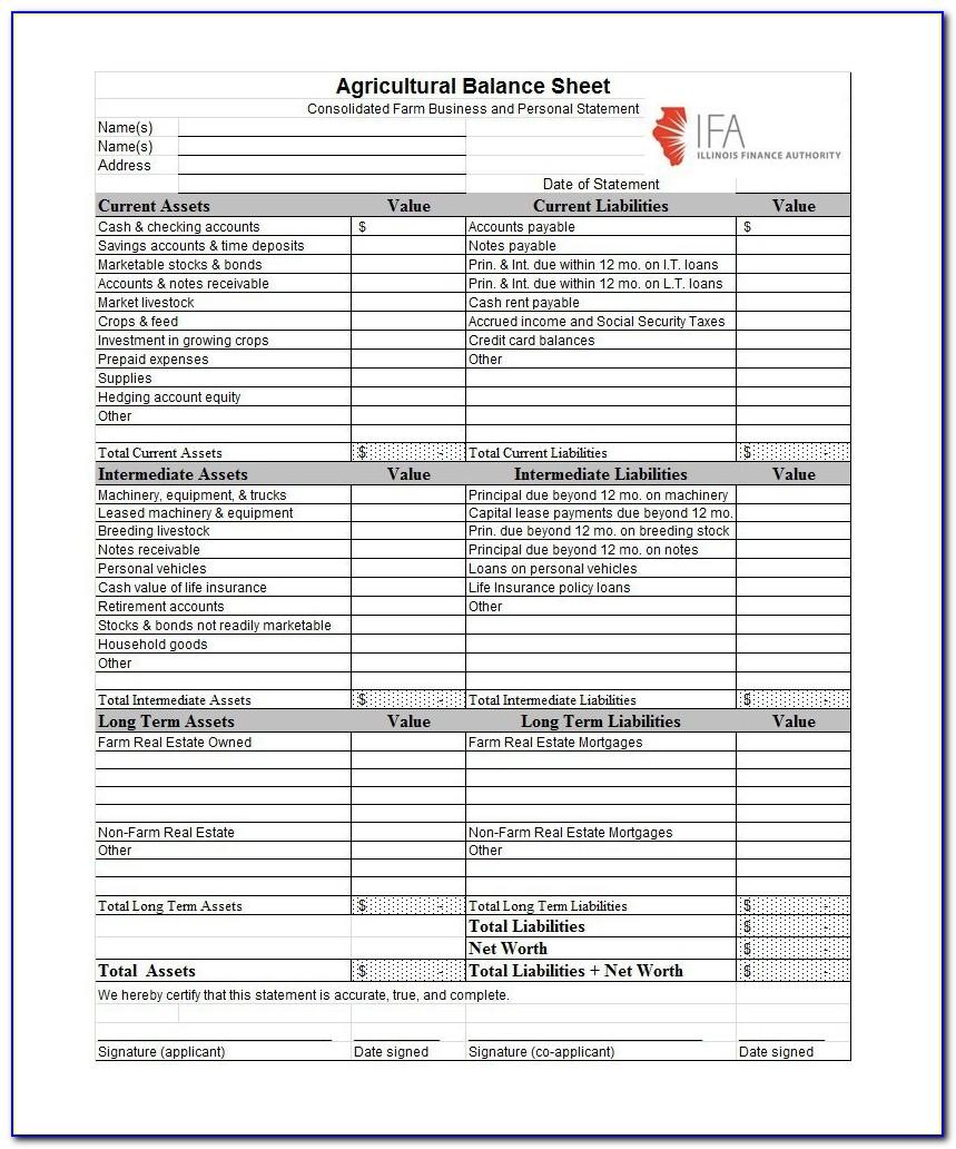Farm Balance Sheet Example