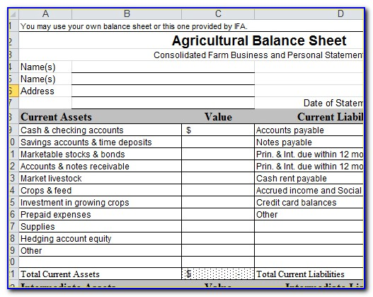 Farm Balance Sheet Template Pdf