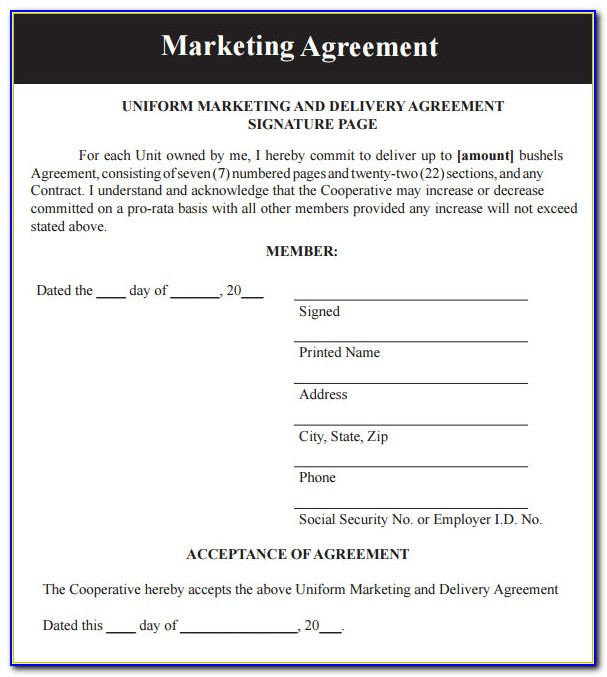 Free Digital Marketing Contract Template