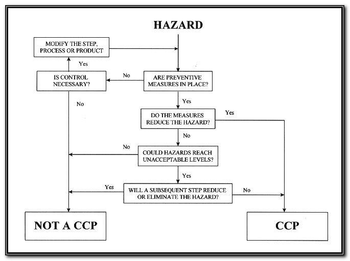 Haccp Hazard Analysis Template