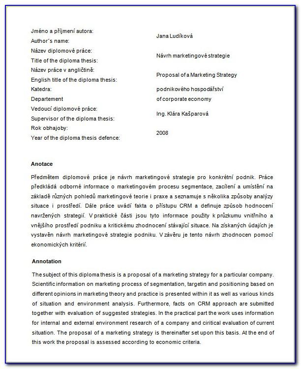 Marketing Strategy Proposal Sample