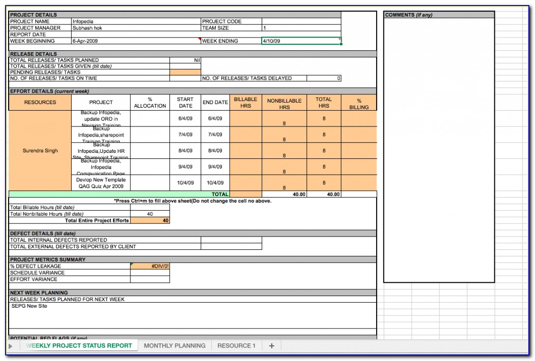 Project Performance Report Template Excel