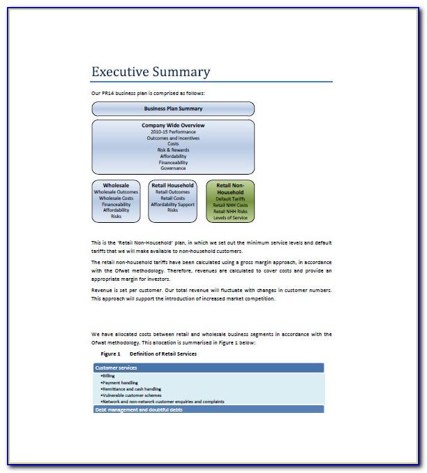 Retail Business Plan Examples Pdf