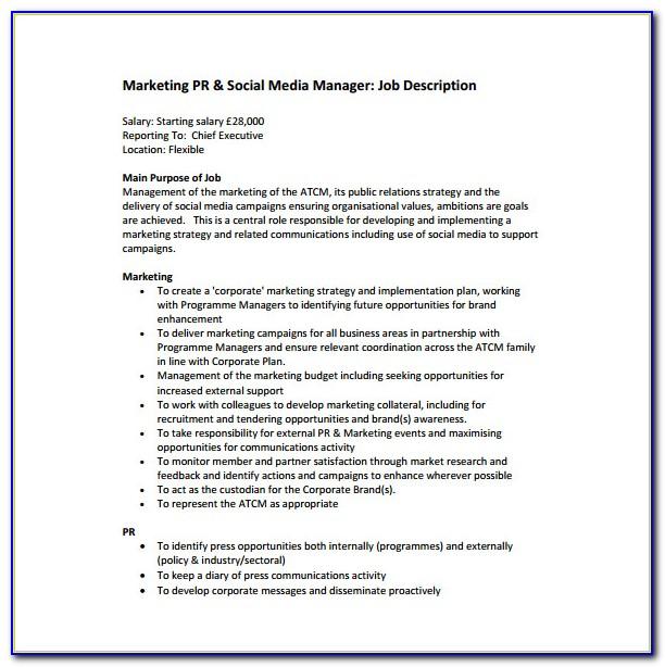Sales Executive Job Description Resume