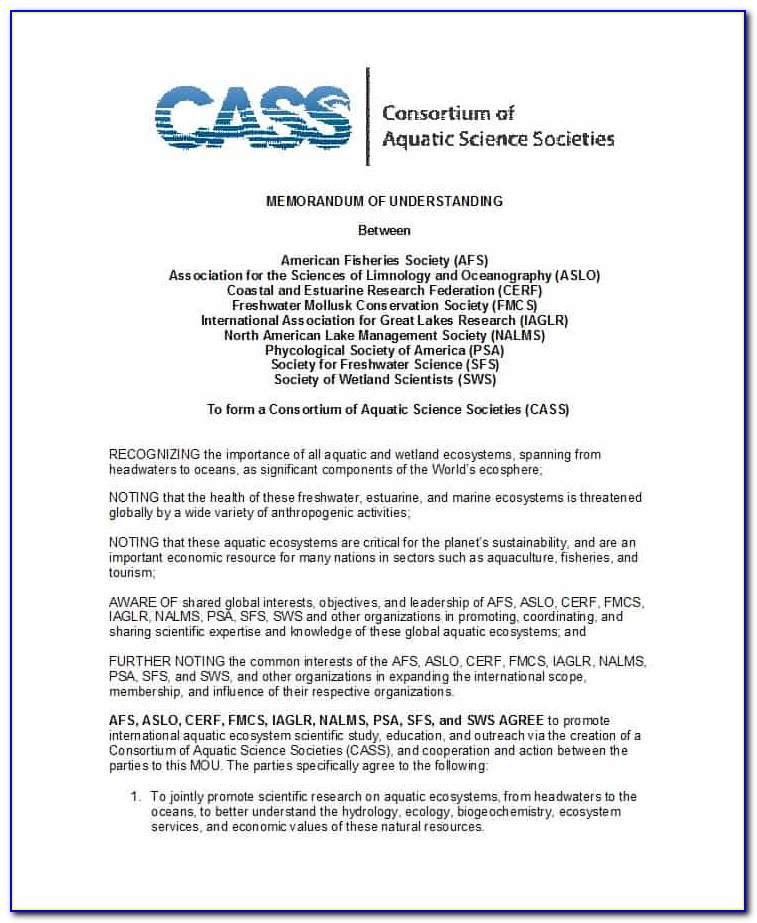 Sample Memorandum Of Understanding Template Free Download