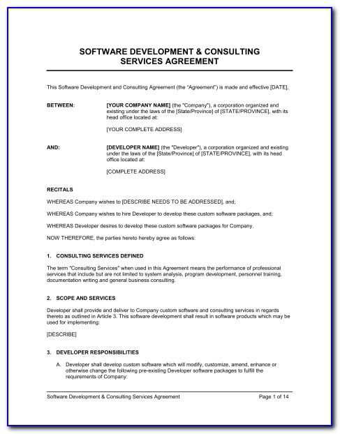 Software Consulting Contract Example