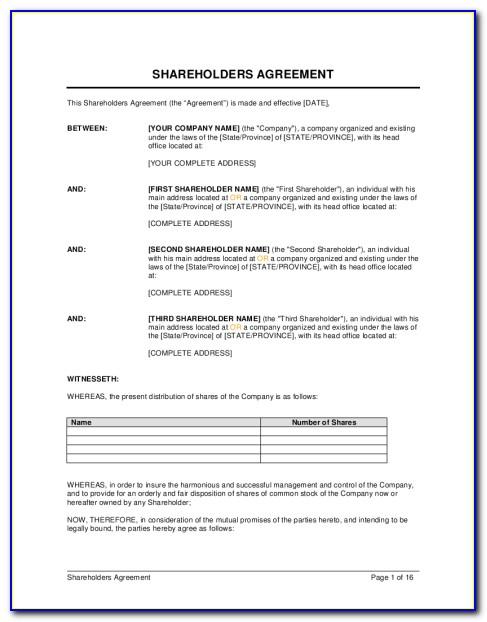 Template Shareholders Agreement Uk