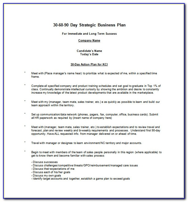 20 30 60 90 Day Action Plan Template Free Sample Example 90 Day Business Plan Template Free