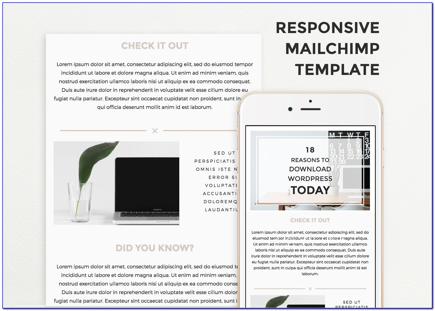 Free Mailchimp Responsive Email Templates