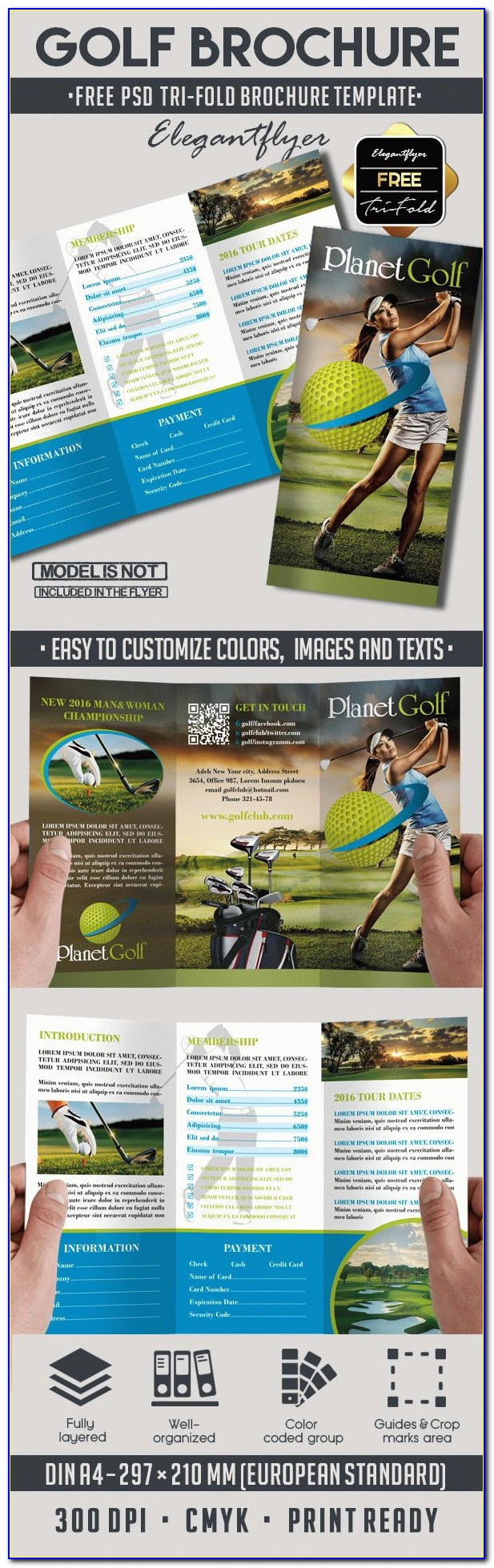 Free Tri Fold Brochure Templates Photoshop