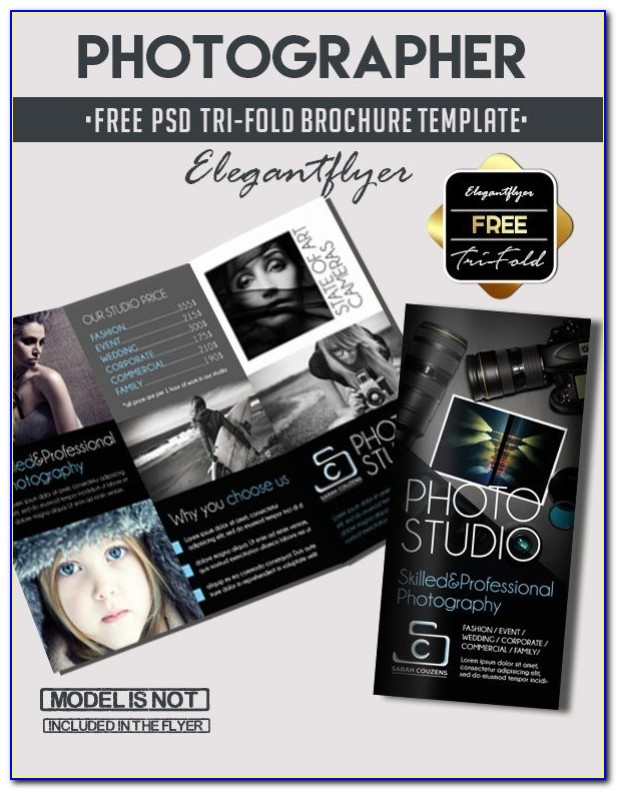 Free Tri Fold Brochure Templates Word