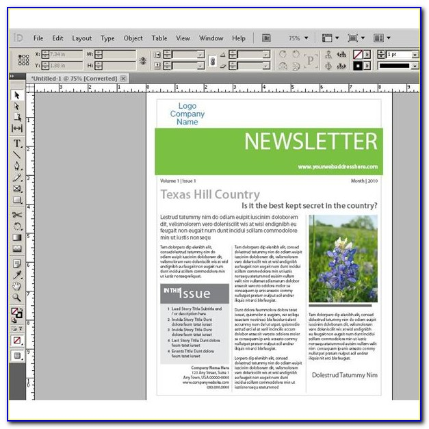 Indesign Newsletter Layout
