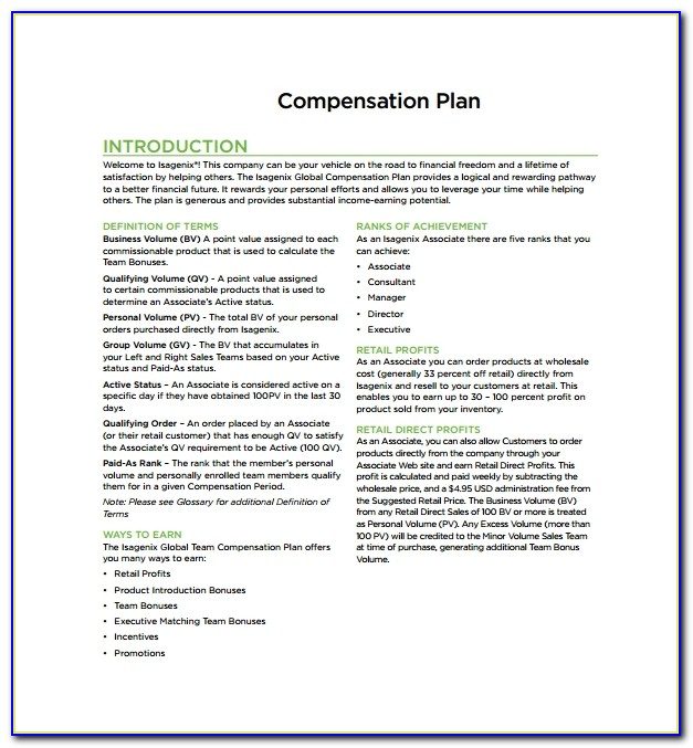 Professional Employee Compensation Plan Template