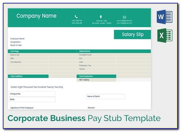 Salary Paycheck Stub Template