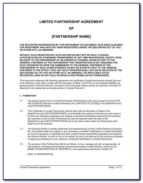 Simple Partnership Agreement Template Free Nz