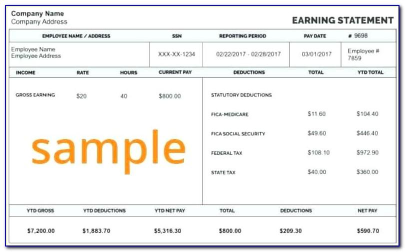 1099 Contractor Pay Stub Template
