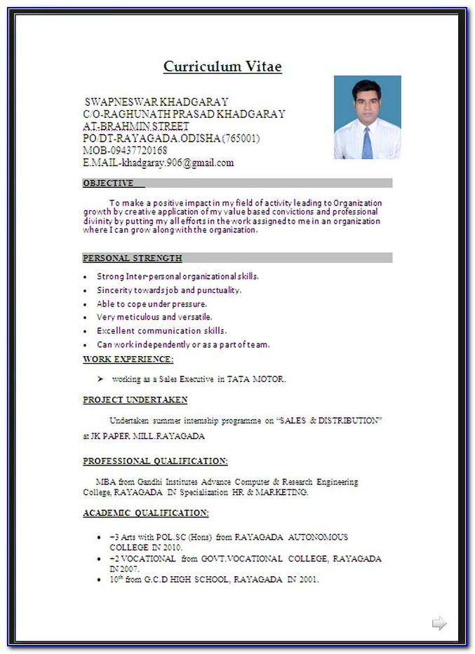 Cv Template Free Word Doc