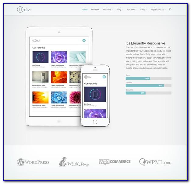 Divi Theme Template
