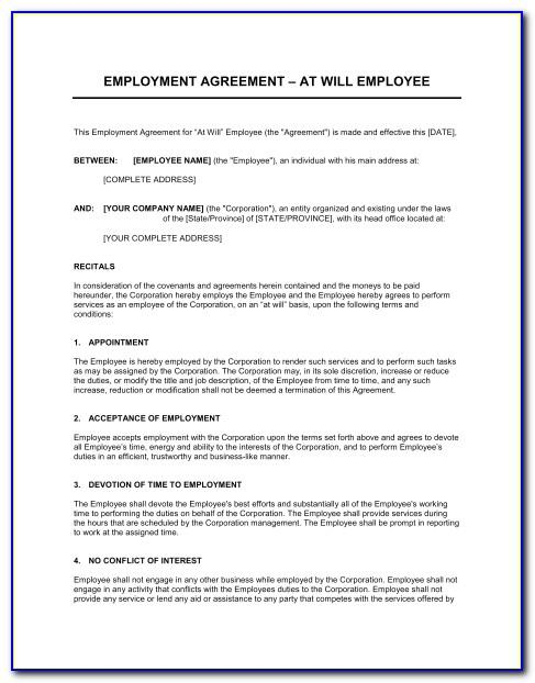 Generic Snow Removal Contract Template