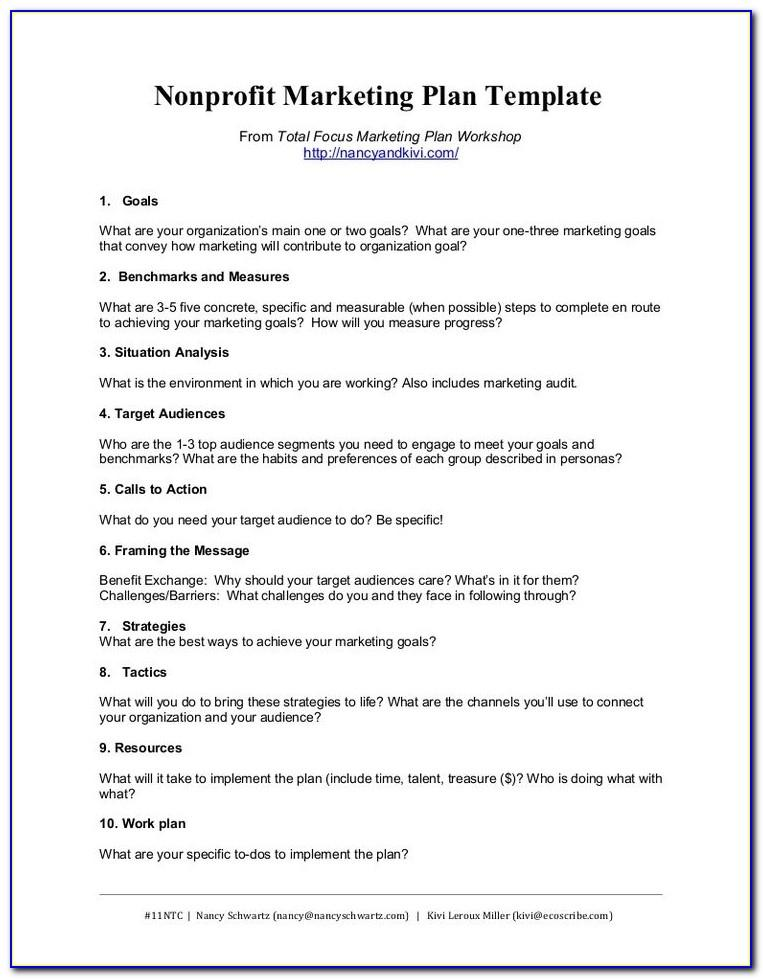 Nonprofit Marketing Plan Example