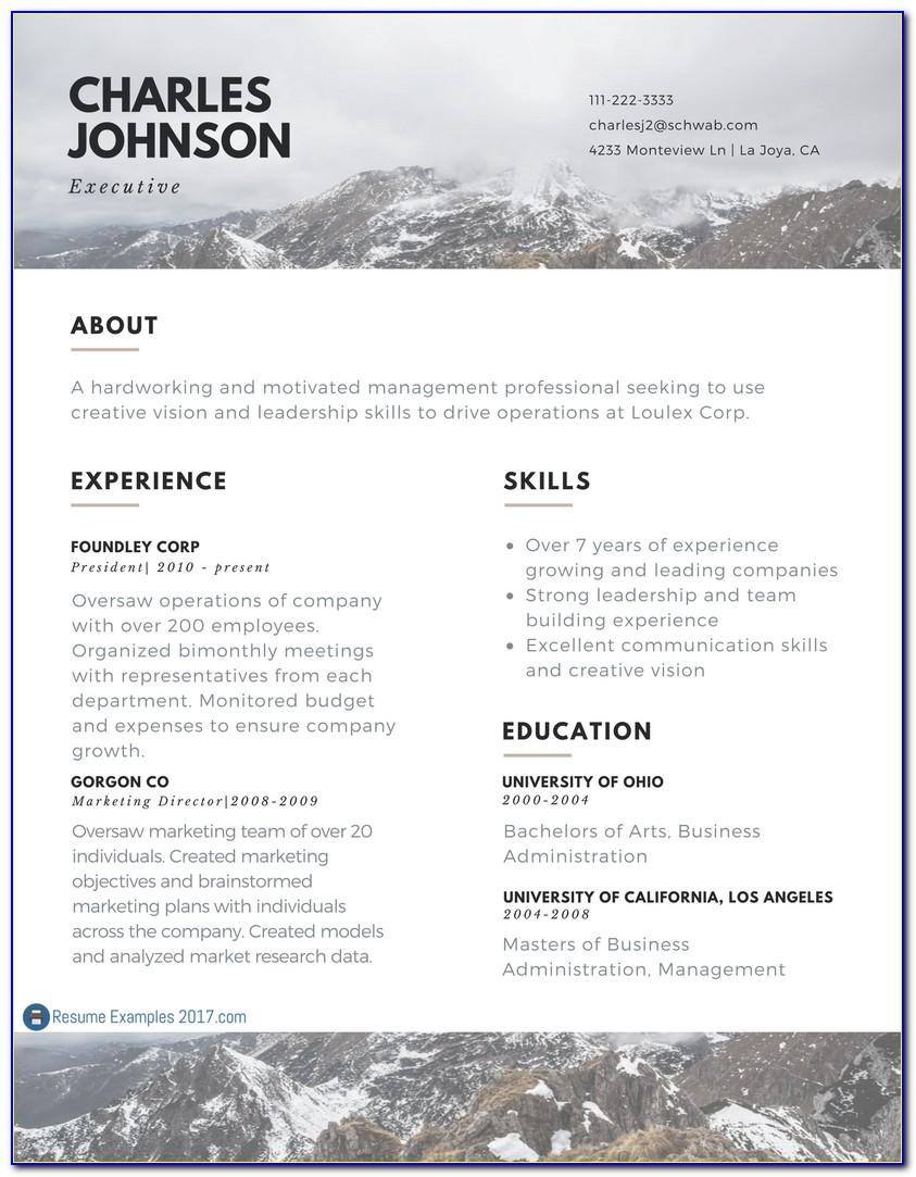 Best Executive Cv Template Word