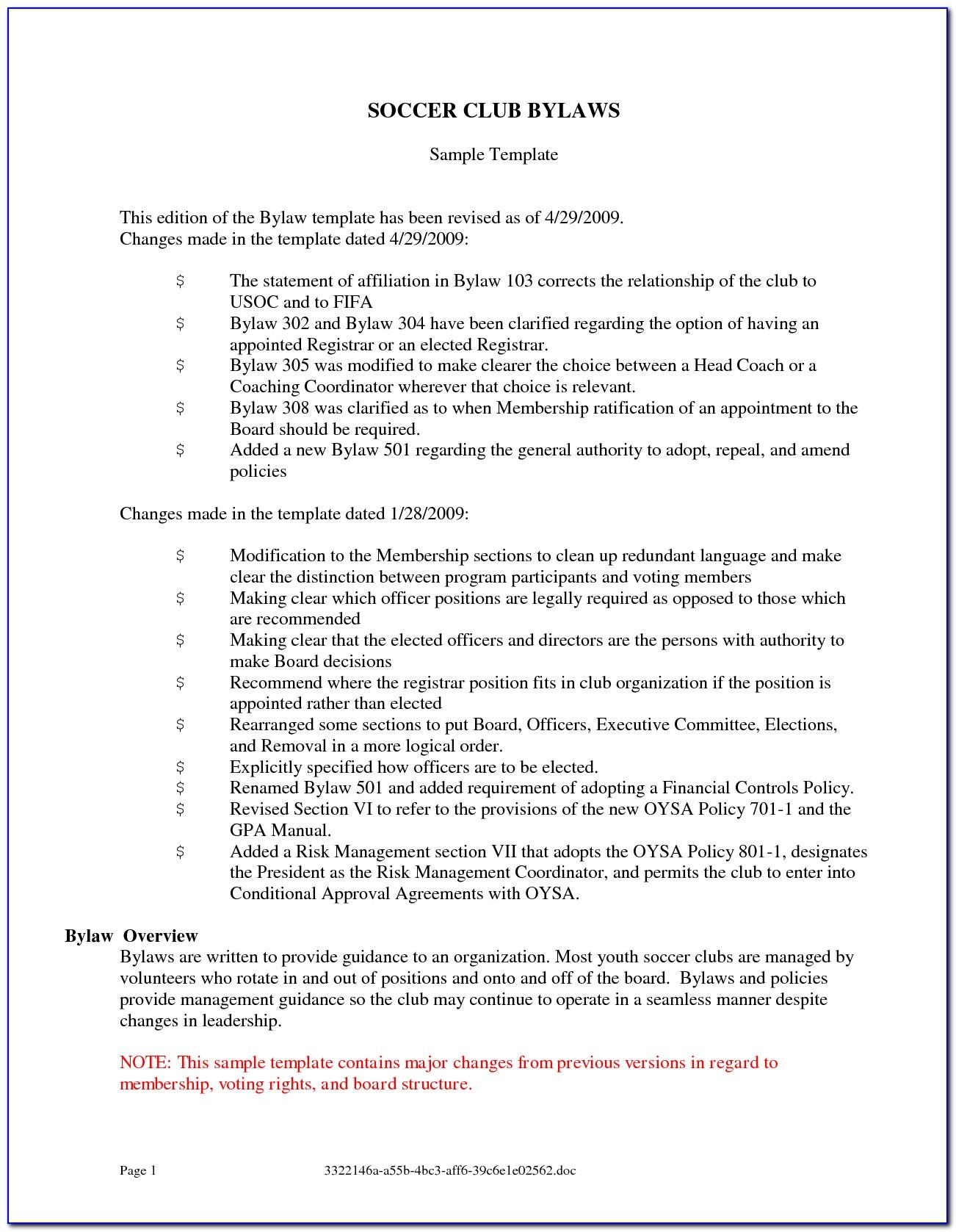 Florida Non Profit Bylaws Template