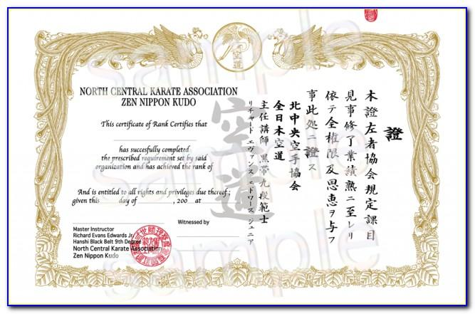 Martial Art Certificate Templates Free