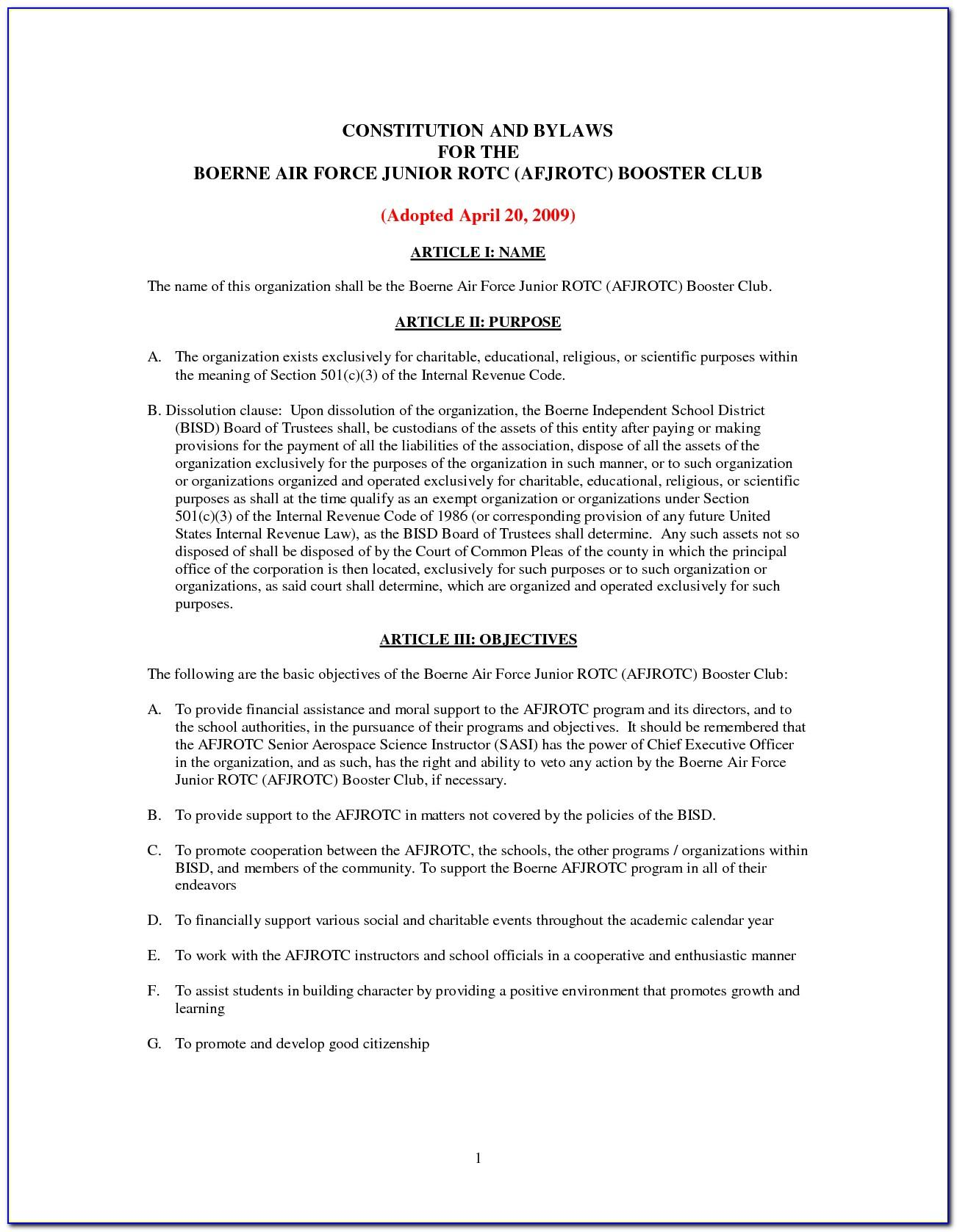 501c3 Bylaws Examples
