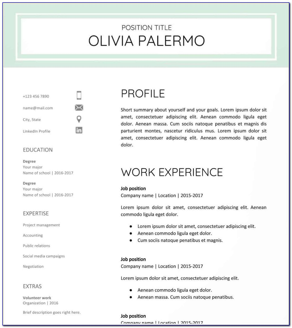 Polished And Fresh Google Docs Resume Template Free