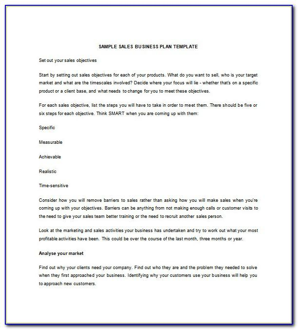 A Sample Computer Sales And Services Business Plan Template