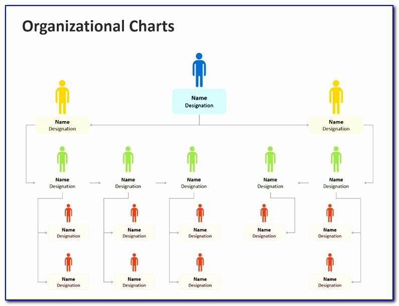 Best Organizational Chart Template
