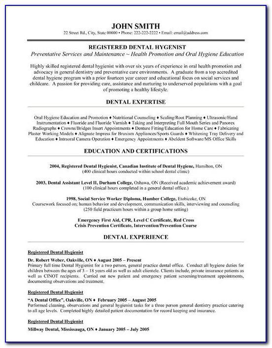 Dental Resume Templates Free