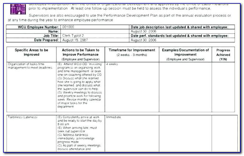Erp Implementation Project Plan Sample