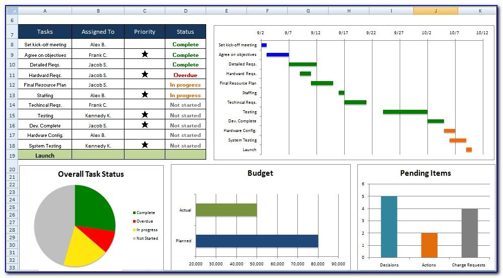 Microsoft Project Dashboard Examples