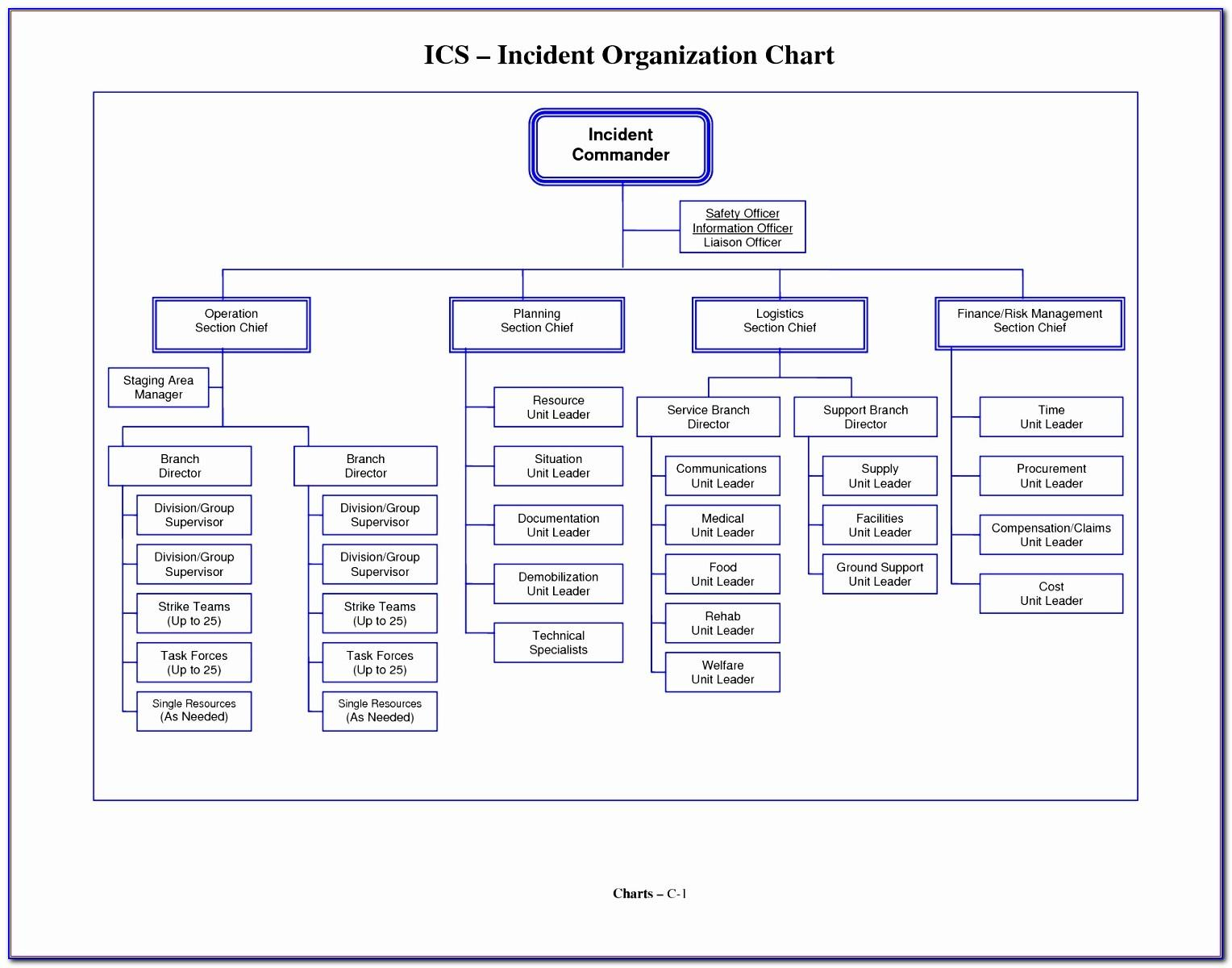 Org Chart Template Free Download
