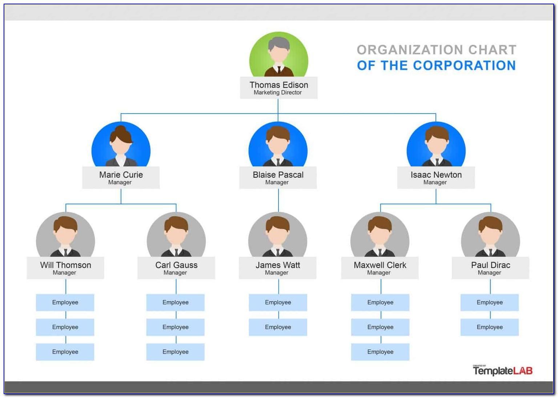 Organization Chart Ppt Template Free