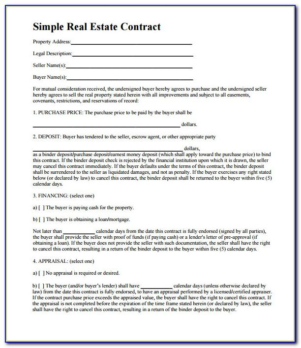 Real Estate Business Plan Template Pdf