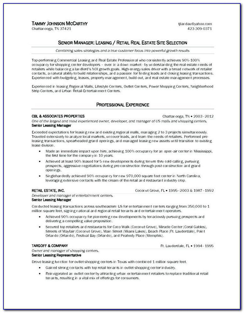 Real Estate Investment Partnership Business Plan Template