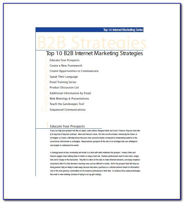Business To Business Marketing Plan Example