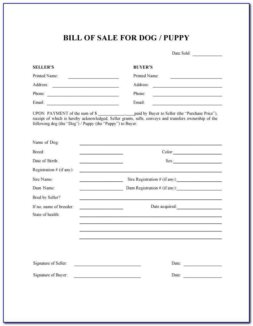 Dog Boarding Registration Form Template