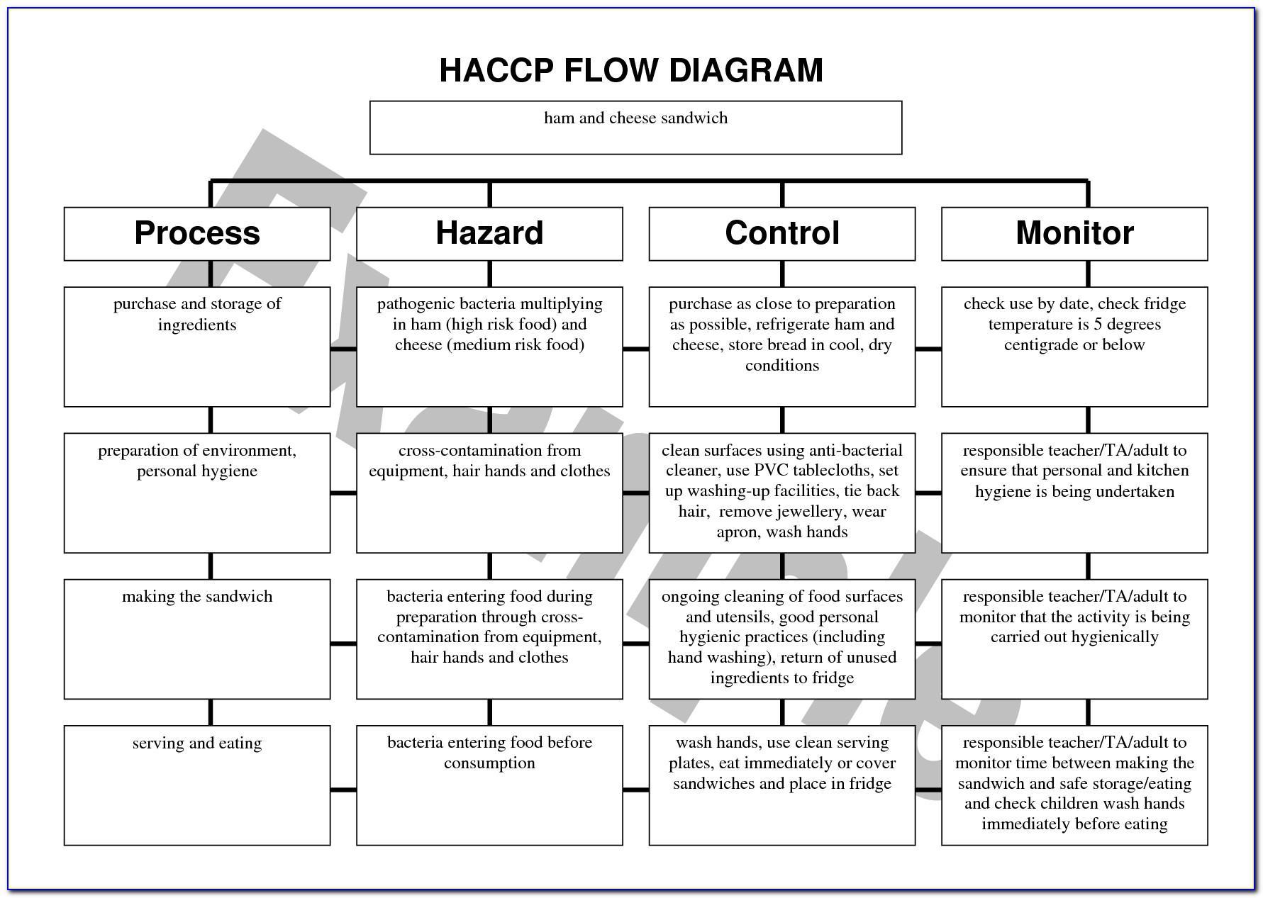 Haccp Templates Free