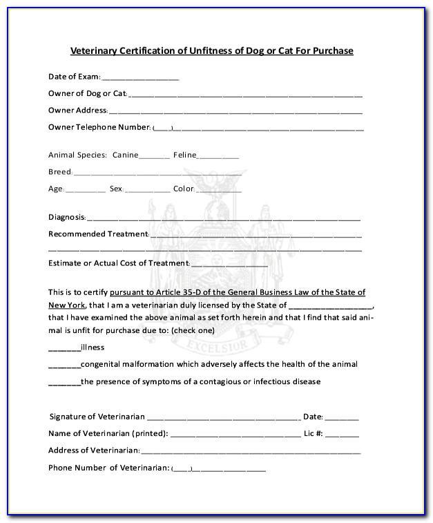 Lost Pet Registration Form Template