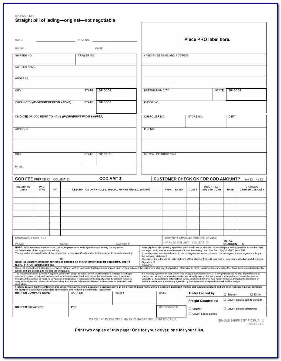 Moving Company Bill Of Lading Template