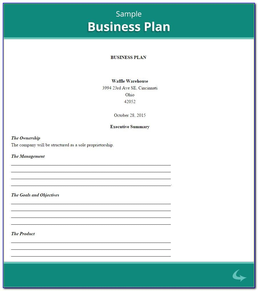 Sole Proprietor Business Plan Template