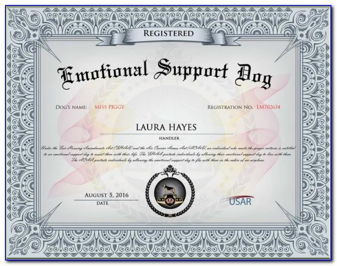 Emotional Support Dog Certificate Template