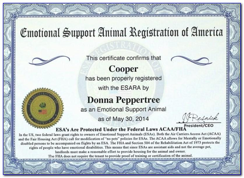 Free Emotional Support Dog Certificate Template