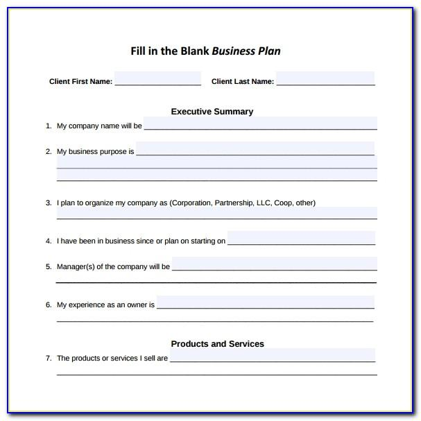 Free Fillable Business Plan Template